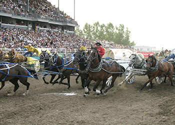 men riding horses at the Strathmore Stampede